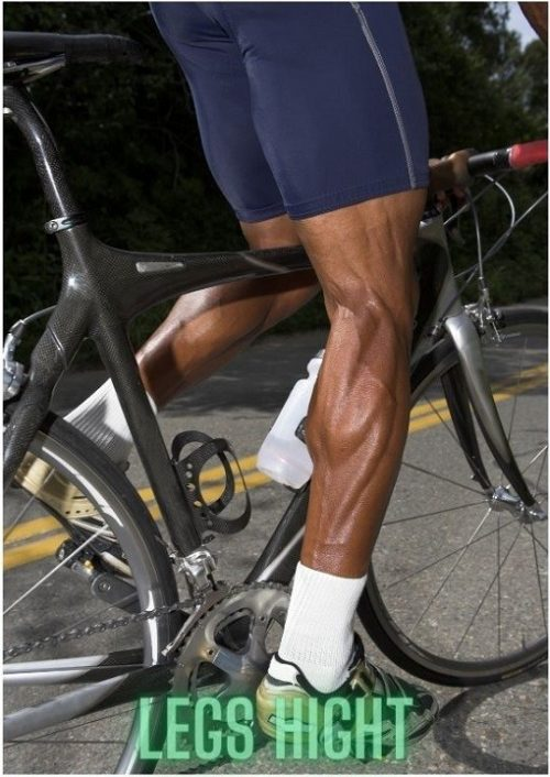 Length of Legs for 26 inch bikes